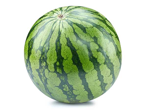 Generation Farms - Watermelon